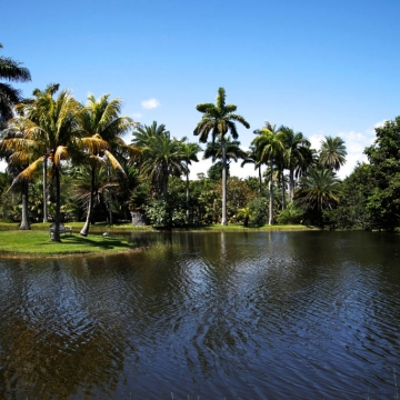 Fairchild Botanic Garden