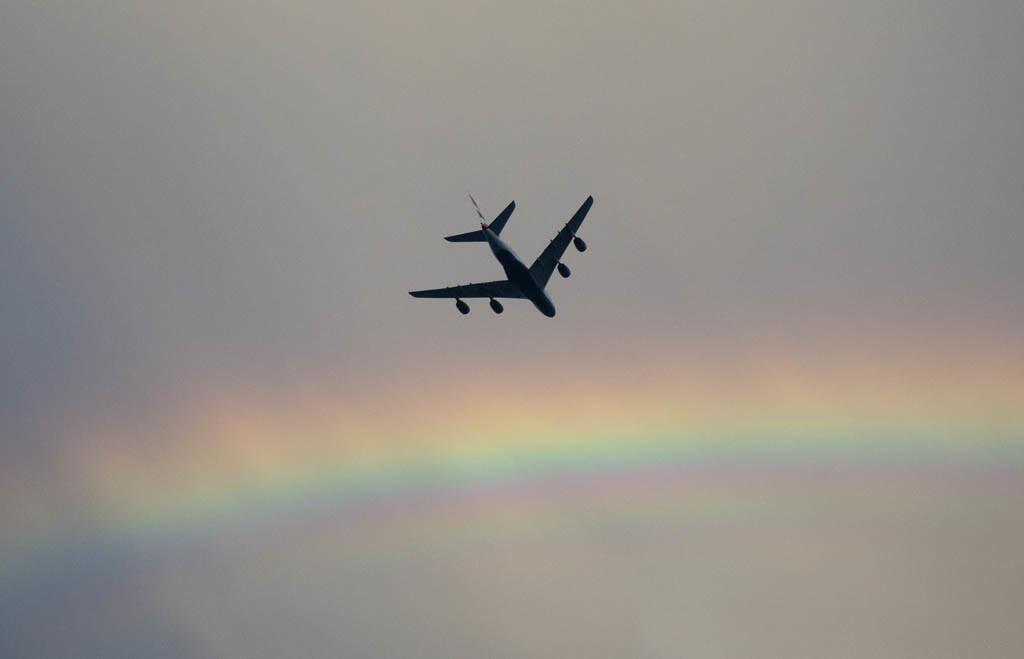 Il volo.jpg