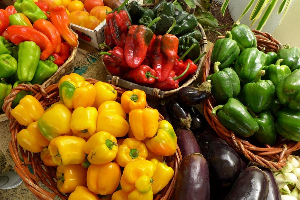 Farmer market botanic1